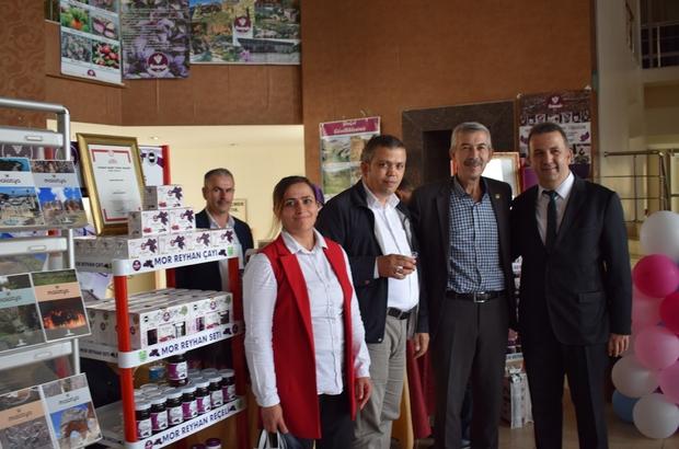 2. Malatya Estetik Güzellik Tanıtım İstihdam Festivali başladı Arapgir Belediyesi festivalde stant açtı