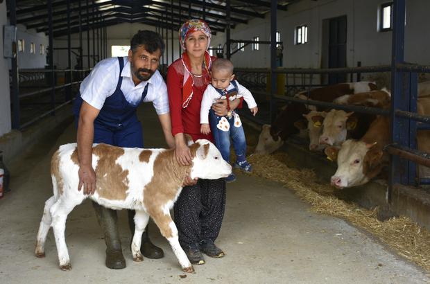Ev kadını, devlet desteğiyle modern çiftlik sahibi oldu