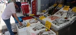 Ordu'da balık çok, talep yok Ramazan bereketli geldi, fiyatlar düştü
