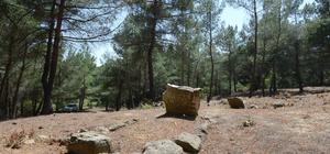 Çanakkale şehidi Mehmet İsmail mezarı başında anıldı