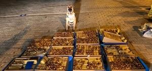 Van'da polis hurma kutuları içerisinde 138 kilo eroin ele geçirdi