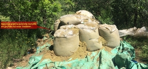 Diyarbakır kırsalında düzenlenen operasyonda 1 ton esrar ele geçirildi