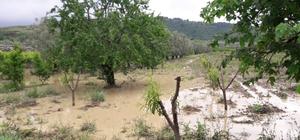 Bursa'da çiftçiyi sağanak yağıştan sonra dolu da vurdu