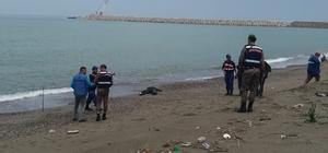 Kayıp yaşlı adamın cesedi 51 gün sonra denizden çıktı