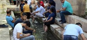 (Özel Haber) Ramazan'da sıcaktan bunalanlar soluğu Balıklıgöl'de alıyor