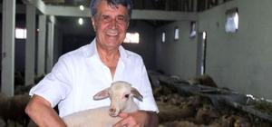 """BTSO Eski Meclis başkanı hayvancılık sektörüne girdi İşadamı Remzi Topuk: """"Ülkemizin ihtiyaç duyduğu alanlarda yatırım yapıyoruz"""""""