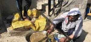 (Özel) Siverek'te dut pekmezi yapımına başlandı Tok tutan pekmez sahur sofralarının vazgeçilmezi oluyor