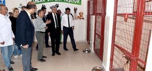 Polat, Hayvan Barınağı ve Doğal Yaşam Alanını ziyaret etti Polat: Hayvan Barınağı ve Doğal Yaşam Merkezi Türkiye'ye örnek