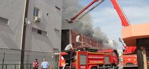 Mersin'deki yangın kontrol altına alındı Bir kişinin yaralandığı yangında bir soğuk hava deposu tamamen yanarken, tekstil fabrikası ile diğer soğuk hava deposu da kısmen yandı