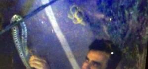 TIR'ın sileceğine dolanan yılanı polis eliyle aldı TIR şoförünün imdadına trafik polisi yetişti