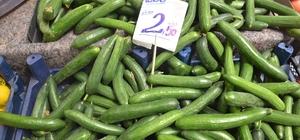 Salatalık fiyatları el yakıyor Ramazan'da salatalığın kilosu 3.5 liraya ulaştı