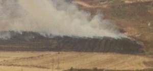 Araban'da arpa ekili arazide anız yangını korkuttu