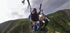 Tekirdağ semalarında bir köpek Köpeği gökyüzünde uçurdular Köpeğin paraşüt keyfi