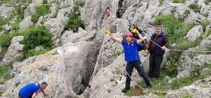 Sivas'ta kayalıklara sıkışan at kurtarıldı