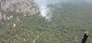 Muğla'da orman yangını Ekiplerin anında müdahalesi ile yangın kısa sürede söndürüldü