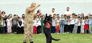 Jandarma erzak tespit köpeği 'Bahis' öğrencilerin gözdesi oldu