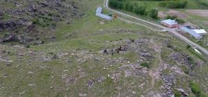 Köylünün kaybolan hayvanlarını jandarma buldu
