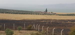 Manisa'da arazi yangını