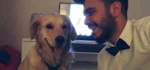 Eski sevgililerin köpek davası avukatlar yüzünden yarım kaldı 'Marley kimde kalacak?' davasına avukatların münakaşası damga vurdu Eski sevgililerin köpekleri için açılan dava başladı