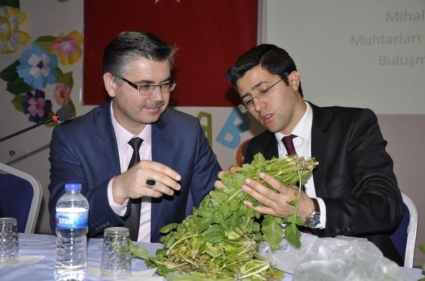 Mihalgazi ve Sarıcakaya'nın en önemli tarımsal sorunları çözüldü Zararlılara karşı ruhsatlı ilaç geliştirildi
