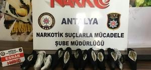 Antalya'ya uyuşturucu madde operasyonu: 2 gözaltı 2 kilo 300 gram esrar ele geçirildi