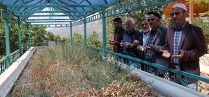 Türkiye'nin en uzun ikinci türbesine ziyaretçi akını Giresun'un Çamoluk ilçesinde Hz. Ebubekir'in soyundan olduğu rivayet edilen Derviş Ali Baba'nın kabri, Ramazan ayında ziyaretçi akınına uğruyor