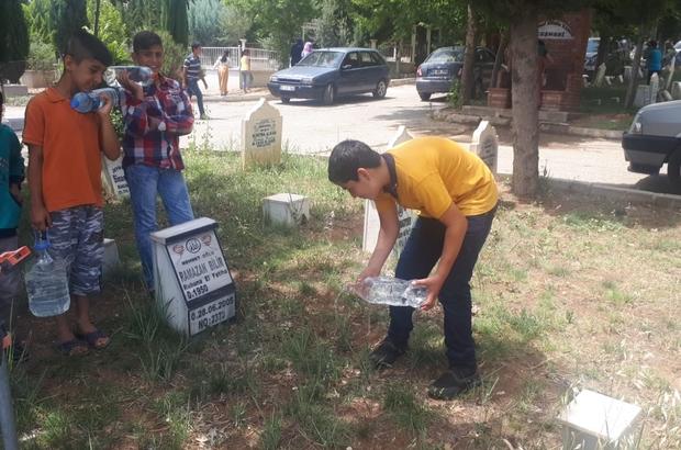Mezarlık sulayarak para kazanıyorlar