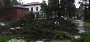 Erbaa'da sağanak yağış ve fırtına maddi hasara neden oldu