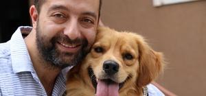 (Özel) Sakarya'da vahşet Zonguldak'ta köpeğe sevgi
