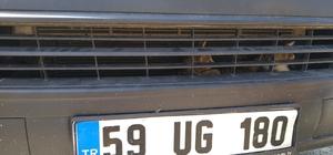 Otomobile sıkışmış kedileri itfaiye kurtardı