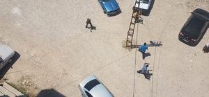 Şanlıurfa'da silahlı kavga anı kamerada Kavgada 3 kişi yaralandı