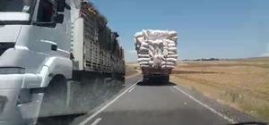 Şanlıurfa'da saman yüklü kamyonun tehlikeli yolculuğu