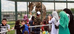 Kayseri Hayvanat Bahçesi'nde bayram yoğunluğu