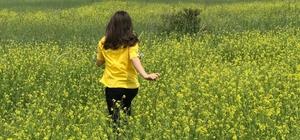 Şiran'a bahar yeni geldi Gümüşhane'nin Şiran ilçesinin rengarenk renklere bürünen tarlaları fotoğraf tutkunlarının ilgi odağı oldu