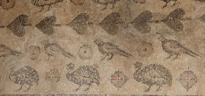 Ahırdan çıkan tarih Sivas'ın Gürün ilçesine bağlı Tepecek köyünde 2002 yılında ahırın tabanından çıkarılan Roma dönemine ait tarihi taban mozaiği üzerinden bulunan motiflerle dikkat çekiyor
