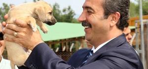 """Başkan Çetin: """"Her canlının yaşam hakkı korunmak zorundadır"""""""