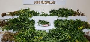 Gaziantep'te uyuşturucu satıcılarına operasyon: 11 tutuklama Operasyonda 7 kilo 655 gram esrar maddesi de ele geçirildi
