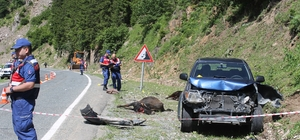 Rize'de kamyonet yol kenarında hayvan otlatan anne ile kızına çarptı: 1 ölü, 1 yaralı Kazada 3 büyükbaş hayvan da telef oldu