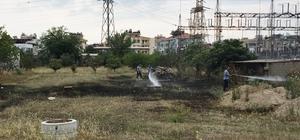 Milas'ta otluk arazide yangın Milas'ta trafo merkezi bölgesinde yangın