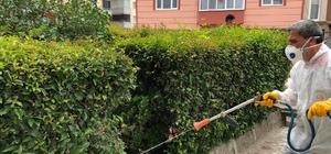 Bilecik'te park ve bahçelere kapsamlı ilaçlama
