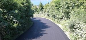 Nailiye Mahallesi'nden Büyükşehir'e asfalt teşekkürü