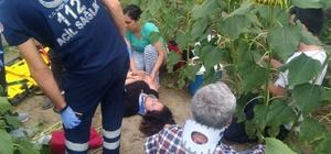Adana'da otomobil ile minibüs çarpıştı: 7 yaralı