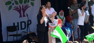 HDP'nin Bitlis mitingi