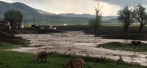 Köy içerisinden geçen dere taştı ekili araziler su altında kaldı Sel sularının gelişi kameralara yansıdı