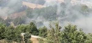 Kahramanmaraş'ta yangın Pazarcık ilçesinde çıkan yangında yaklaşık 50 dekarlık mera arazisi ve buğday tarlası yandı