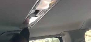 VİP aracın klimasında uyuşturucu yakalandı