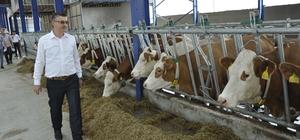 Eskişehir'e modern süt tesisleri kuruluyor Yıllık 915 ton süt üretimi yapılacak tesiste 11 kişiye istihdam sağlanacak, bir ilk olarak robotik süt sağım sistemi kullanılacak