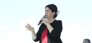 Şemdinli ve Yüksekova'da HDP mitingi