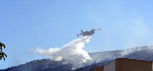 Milas'ta makilik alanda yangın
