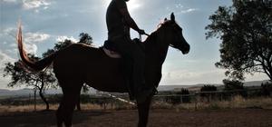 Müdürlüğü bıraktı, at çiftliği açtı Gördüğü bir rüya sonrası atlarla ilgilenmeye başlayan 41 yaşındaki 3 çocuk babası, Elazığ'da at çiftliği açarak atlarla iç içe yaşamaya başladı